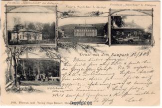 2110A-Saupark249-Multibilder-Schloss-Forsthaeuser-1905-Scan-Vorderseite.jpg
