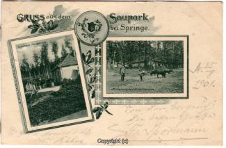 2240A-Saupark255-Multibilder-Morgenruh-Wildschweine-1901-Scan-Vorderseite.jpg