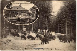 2360A-Saupark263-Multibilder-Jaegerhaus-1912-Scan-Vorderseite.jpg