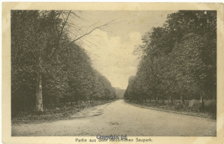 2520A-Saupark139-Kaiserallee-1919-Scan-Vorderseite.jpg