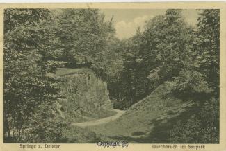 2570A-Saupark93-Durchbruch-1931-Scan-Vorderseite.jpg