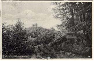 2740A-Saupark272-Saupark-Hallermundskopf-1933-Scan-Vorderseite.jpg