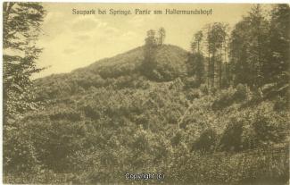 2745A-Saupark138-Hallermundskopf-1919-Scan-Vorderseite.jpg