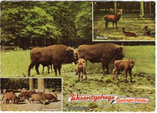 6340A-Saupark335-Multibilder-Wisentgehege-1963-Scan-Vorderseite.jpg