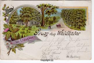 0020A-Waldkater003-Multibilder-Litho-1899-Scan-Vorderseite.jpg