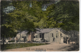 0050A-Waldkater004-Vorderansicht-1908-Scan-Vorderseite.jpg