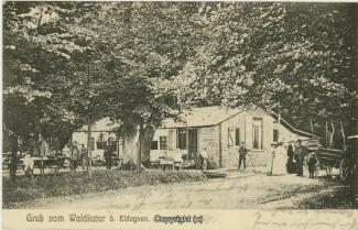 0060A-Waldkater005-Vorderansicht-1908-Scan-Vorderansicht-1908.jpg