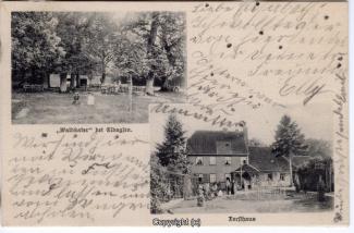 0210A-Waldkater007-Multibilder-1903-Scan-Vorderseite.jpg