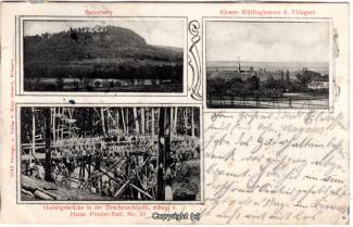 0130A-Wuelfinghausen009-Kloster-Hedwigsbruecke-Barenburg-1905-Scan-Vorderseite.jpg