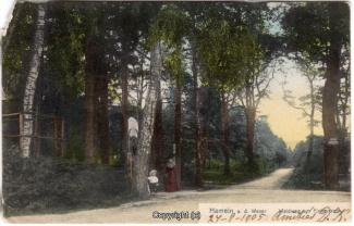 6515A-Hameln1631-Kluet-Finkenborn-1905-Scan-Vorderseite.jpg