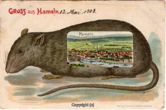 1110A-Hameln1447-Panorama-Ratte-1909-Scan-Vorderseite.jpg