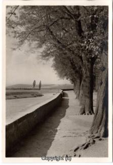 8650A-Hameln1717-Weserpromenade-1942-Scan-Vorderseite.jpg