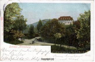 2050A-Arensburg002-Panorama-Schloss-1904-Scan-Vorderseite.jpg
