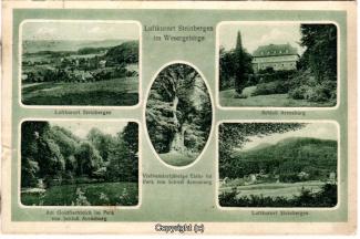 3050A-Steinbergen001-Multibilder-Ort-Arensburg-1929-Scan-Vorderseite.jpg