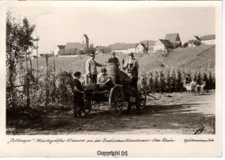6010A-Oetlingen001-Panorama-Ort-Weinbau-1959-Scan-Vorderseite.jpg