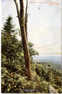 2225A-Hochblauen004-Blauenblick-1905-Scan-Vorderseite.jpg