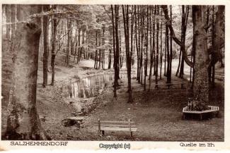 0895A-Salzhemmendorf360-Quelle-Scan-Vorderseite.jpg