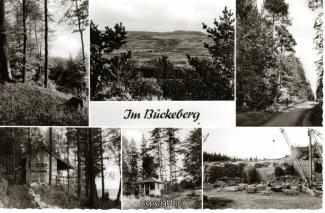 0250A-Bueckeberg011-Multibilder-Wald-Steinbruch-Scan-Vorderseite.jpg