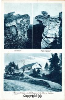 4025A-Ith113-Multibilder-Ithrestaurant-Krokodil-Kamelkopf-1930-Scan-Vorderseite.jpg