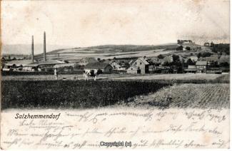 0695A-Salzhemmendorf363-Panorama-Ort-1906-Scan-Vorderseite.jpg