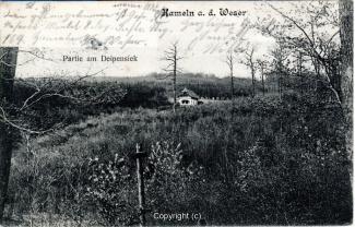 7050A-Hameln1793-Panorama-Deipensiek-1907-Scan-Vorderseite.jpg