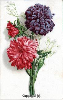 2070A-Grusskarten031-Allgemein-1926-Scan-Vorderseite.jpg
