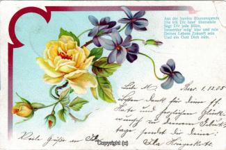2120A-Grusskarten036-Allgemein-1905-Scan-Vorderseite.jpg