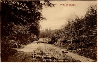 1510A-Deister003-Waldweg-Scan-Vorderseite.jpg